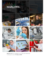 Marlowe plc Annual Report and Financial Statements 2019